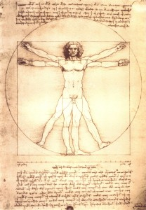 Da_Vinci's_Anatomical_Man